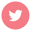 twitter icon - pink
